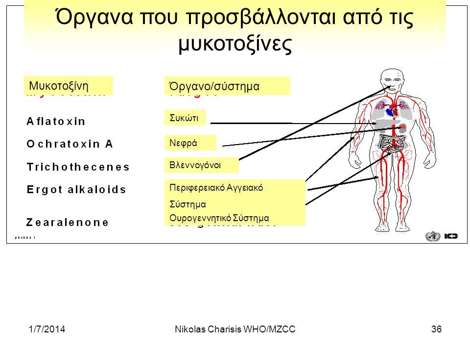 1/7/2014Nikolas Charisis WHO/MZCC36 Όργανα που προσβάλλονται από τις μυκοτοξίνες Μυκοτοξίνη Όργανο/σύστημα Συκώτι Νεφρά Βλεννογόνοι Περιφερειακό Αγγει