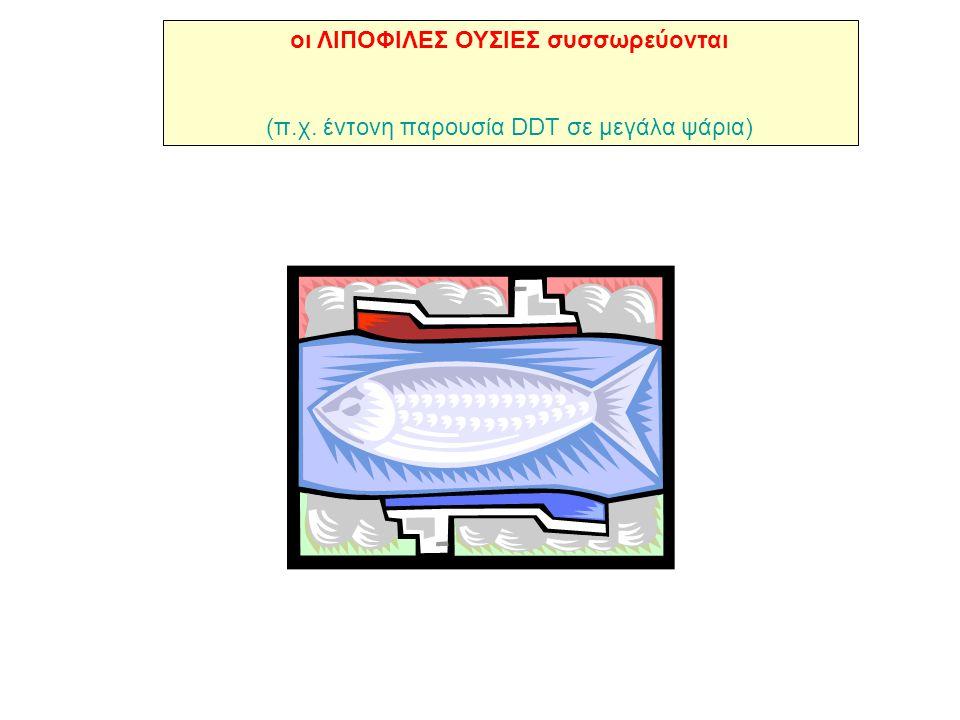 οι ΛΙΠΟΦΙΛΕΣ ΟΥΣΙΕΣ συσσωρεύονται (π.χ. έντονη παρουσία DDT σε μεγάλα ψάρια)
