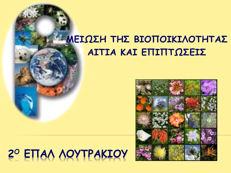 Εγγειοβελτιωτικά έργα - αποξηράνσεις Διευθετήσεις χειμάρρων και κοιτών ποταμών Υπερβολική χρήση λιπασμάτων και φυτοφαρμάκων •Μετατροπή υγροτόπων σε γεωργική γη •Μεταβολή στον κύκλο του νερού •Ευτροφισμός •Μείωση μεταναστευτικών πουλιών που χρησιμοποιούν τους υγρότοπους ως ενδιάμεσους σταθμούς στα ταξίδια τους ή ως τόπους διαχείμασης
