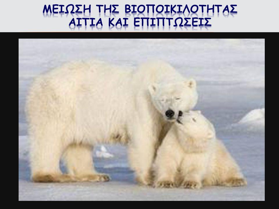  Η καταστροφή των βιοτόπων. Η υπερεκμετάλλευση των ειδών.