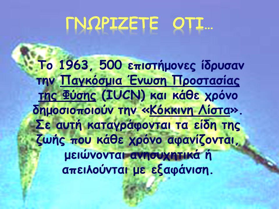  Στην Ελλάδα έχουν καταγραφεί 126 είδη ψαριών του γλυκού νερού (η πέστροφα, το χέλι, το λαβράκι, ο κυπρίνος).