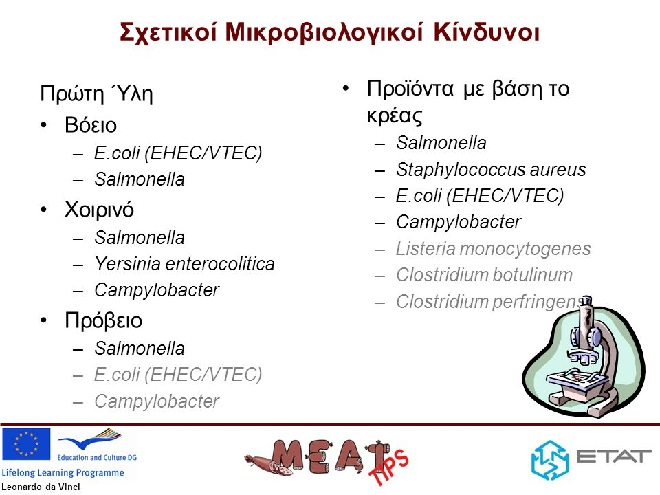 Leonardo da Vinci Σχετικοί Μικροβιολογικοί Κίνδυνοι Πρώτη Ύλη •Βόειο –E.coli (EHEC/VTEC) –Salmonella •Χοιρινό –Salmonella –Yersinia enterocolitica –Ca