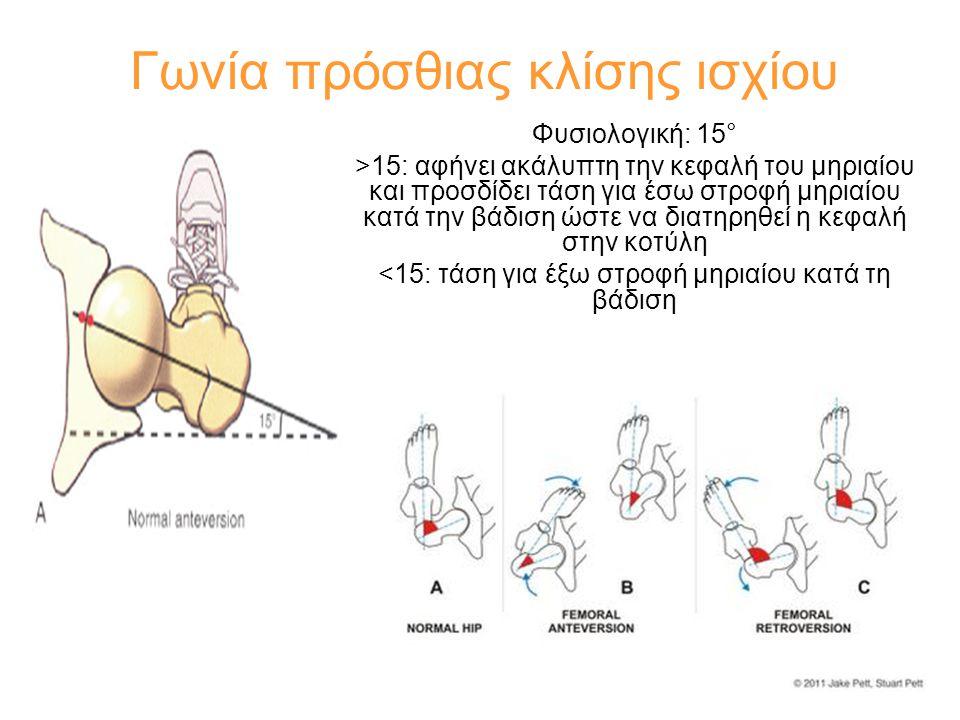 Γωνία πρόσθιας κλίσης ισχίου Φυσιολογική: 15° >15: αφήνει ακάλυπτη την κεφαλή του μηριαίου και προσδίδει τάση για έσω στροφή μηριαίου κατά την βάδιση