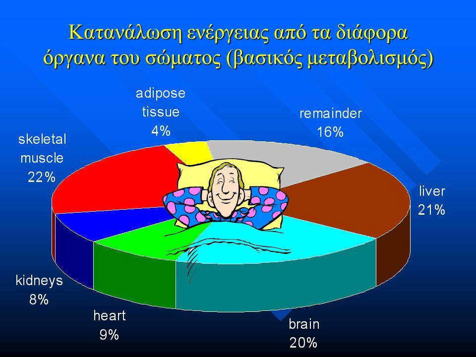 Κατανάλωση ενέργειας από τα διάφορα όργανα του σώματος (βασικός μεταβολισμός)