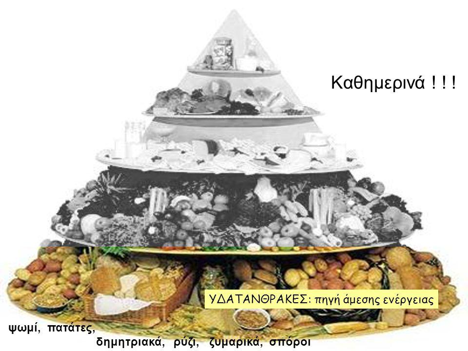 ψωμί, πατάτες, δημητριακά, ρύζι, ζυμαρικά, σπόροι Καθημερινά ! ! ! ΥΔΑΤΑΝΘΡΑΚΕΣ: πηγή άμεσης ενέργειας