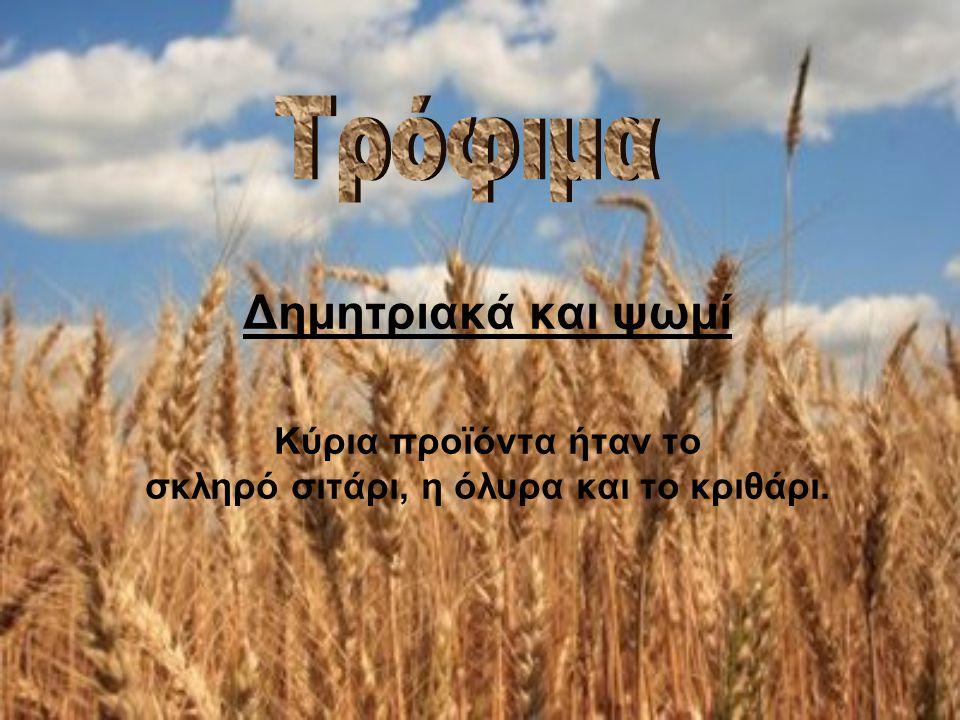 Δημητριακά και ψωμί Κύρια προϊόντα ήταν το σκληρό σιτάρι, η όλυρα και το κριθάρι.