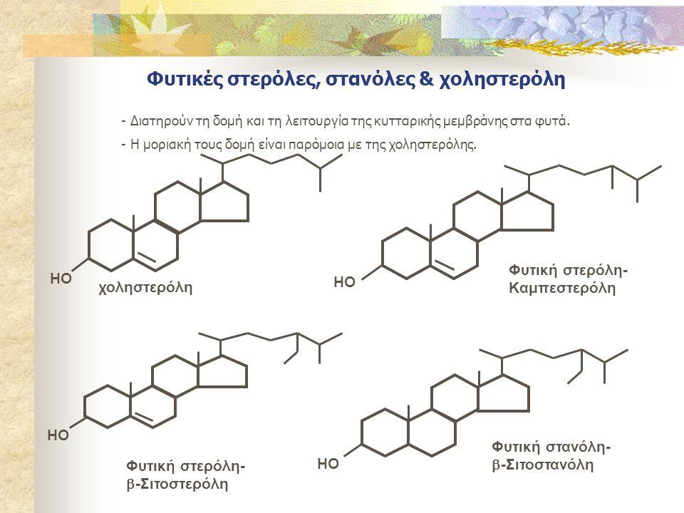 Φυτικές στερόλες, στανόλες & χοληστερόλη - Διατηρούν τη δομή και τη λειτουργία της κυτταρικής μεμβράνης στα φυτά. - Η μοριακή τους δομή είναι παρόμοια