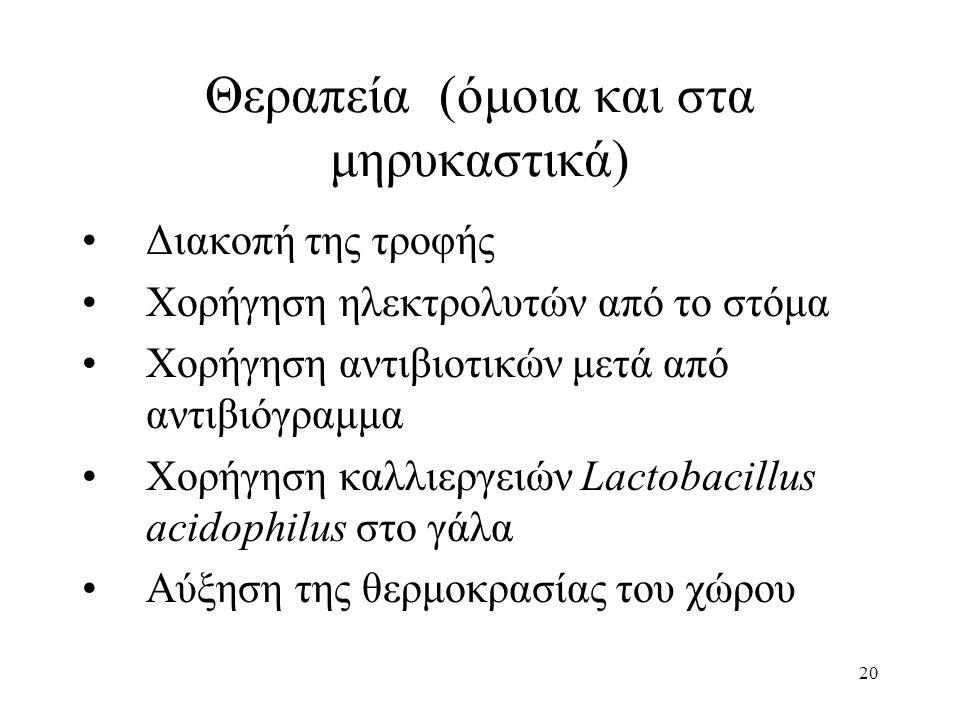 20 Θεραπεία (όμοια και στα μηρυκαστικά) •Διακοπή της τροφής •Χορήγηση ηλεκτρολυτών από το στόμα •Χορήγηση αντιβιοτικών μετά από αντιβιόγραμμα •Χορήγηση καλλιεργειών Lactobacillus acidophilus στο γάλα •Αύξηση της θερμοκρασίας του χώρου
