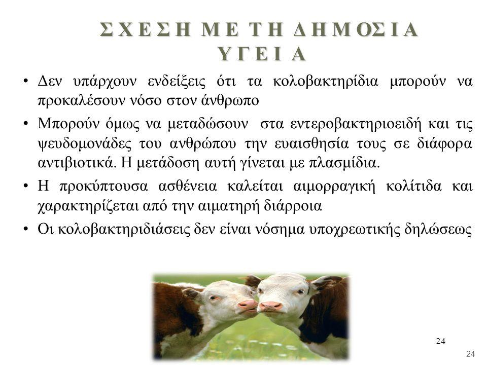 24 Σ Χ Ε Σ Η Μ Ε Τ Η Δ Η Μ ΟΣ Ι Α Υ Γ Ε Ι Α •Δεν υπάρχουν ενδείξεις ότι τα κολοβακτηρίδια μπορούν να προκαλέσουν νόσο στον άνθρωπο •Μπορούν όμως να μεταδώσουν στα εντεροβακτηριοειδή και τις ψευδομονάδες του ανθρώπου την ευαισθησία τους σε διάφορα αντιβιοτικά.