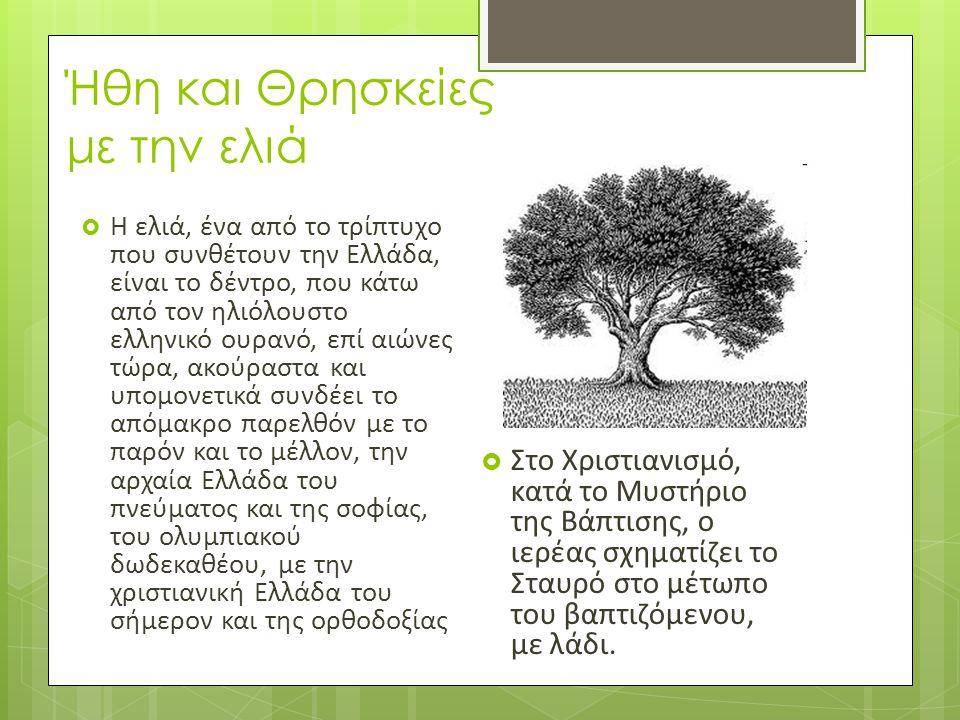 Ήθη και Θρησκείες με την ελιά  Η ελιά, ένα από το τρίπτυχο που συνθέτουν την Ελλάδα, είναι το δέντρο, που κάτω από τον ηλιόλουστο ελληνικό ουρανό, επ