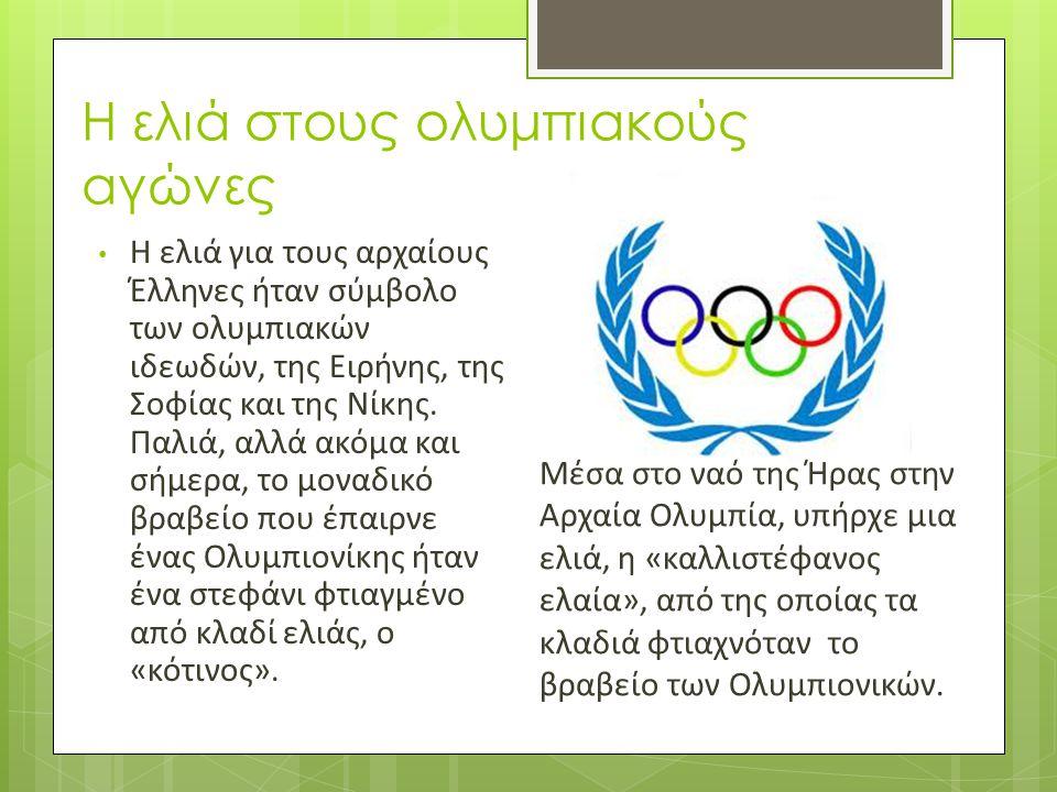 Η ελιά στους ολυμπιακούς αγώνες • Η ελιά για τους αρχαίους Έλληνες ήταν σύμβολο των ολυμπιακών ιδεωδών, της Ειρήνης, της Σοφίας και της Νίκης. Παλιά,