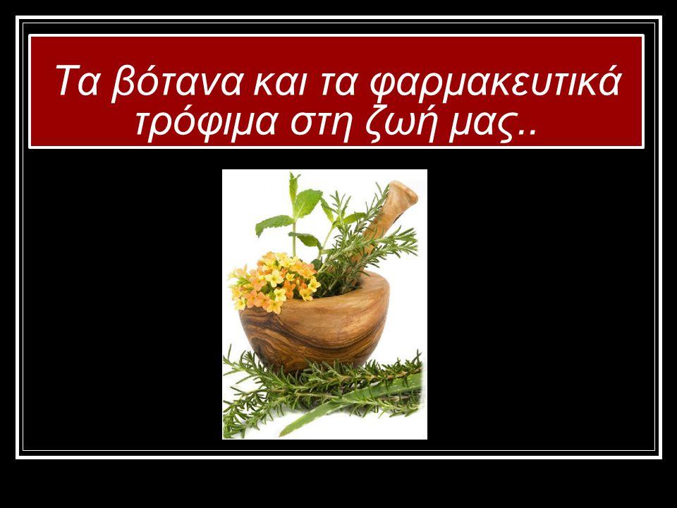 Τα βότανα και τα φαρμακευτικά τρόφιμα στη ζωή μας..