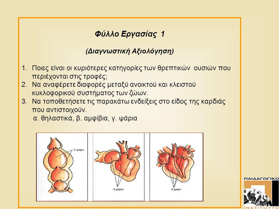 Φύλλο Εργασίας 1 (Διαγνωστική Αξιολόγηση) 1.Ποιες είναι οι κυριότερες κατηγορίες των θρεπτικών ουσιών που περιέχονται στις τροφές; 2.Να αναφέρετε διαφ