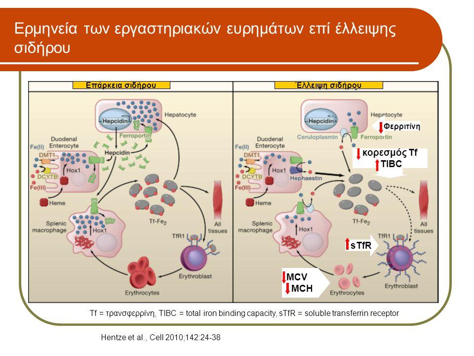 Ερμηνεία των εργαστηριακών ευρημάτων επί έλλειψης σιδήρου MCV MCH sTfR Φερριτίνη κορεσμός Tf TIBC Επάρκεια σιδήρουΈλλειψη σιδήρου Hentze et al., Cell