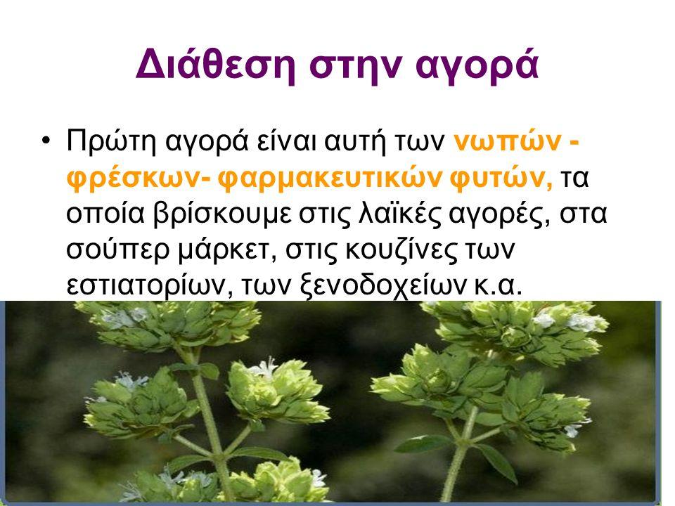Διάθεση στην αγορά •Πρώτη αγορά είναι αυτή των νωπών - φρέσκων- φαρμακευτικών φυτών, τα οποία βρίσκουμε στις λαϊκές αγορές, στα σούπερ μάρκετ, στις κο