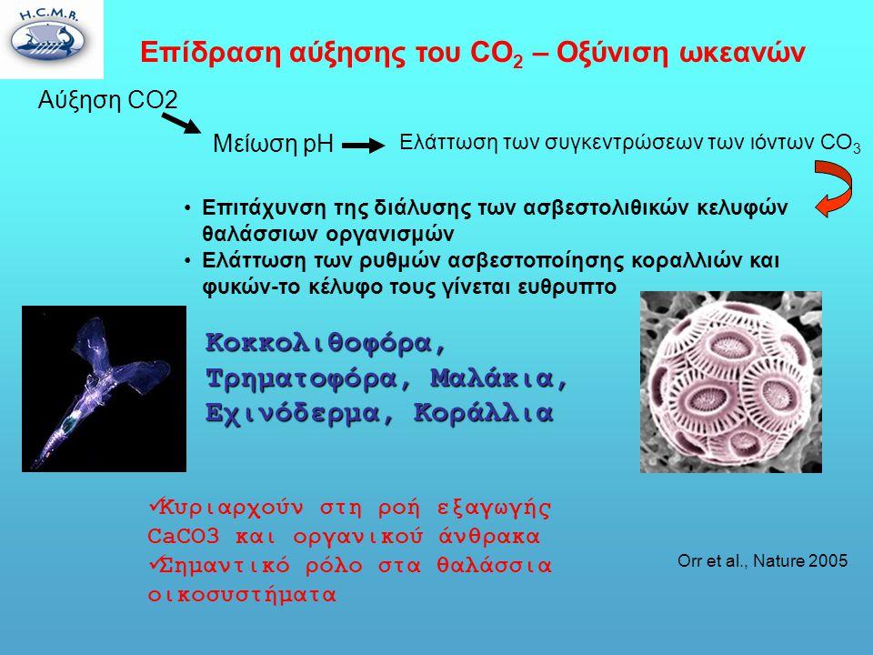 Επίδραση αύξησης του CO 2 – Οξύνιση ωκεανών Orr et al., Nature 2005 Αύξηση CO2 Μείωση pH •Επιτάχυνση της διάλυσης των ασβεστολιθικών κελυφών θαλάσσιων οργανισμών •Ελάττωση των ρυθμών ασβεστοποίησης κοραλλιών και φυκών-το κέλυφο τους γίνεται ευθρυπτο Κοκκολιθοφόρα, Τρηματοφόρα, Μαλάκια, Εχινόδερμα, Κοράλλια  Κυριαρχούν στη ροή εξαγωγής CaCO3 και οργανικού άνθρακα  Σημαντικό ρόλο στα θαλάσσια οικοσυστήματα Ελάττωση των συγκεντρώσεων των ιόντων CO 3