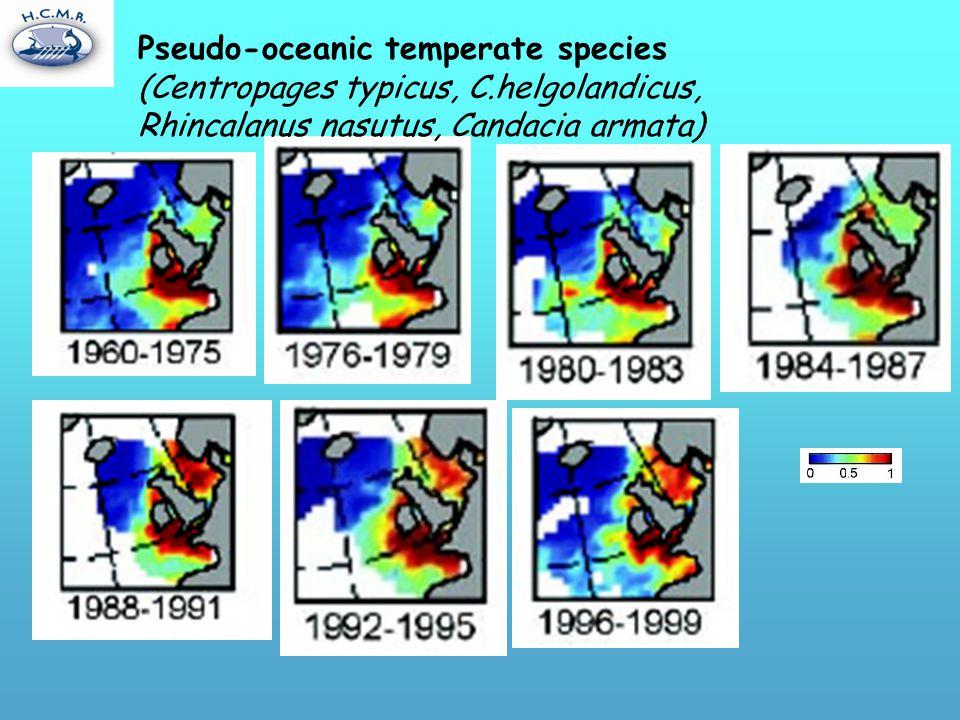 Pseudo-oceanic temperate species (Centropages typicus, C.helgolandicus, Rhincalanus nasutus, Candacia armata)