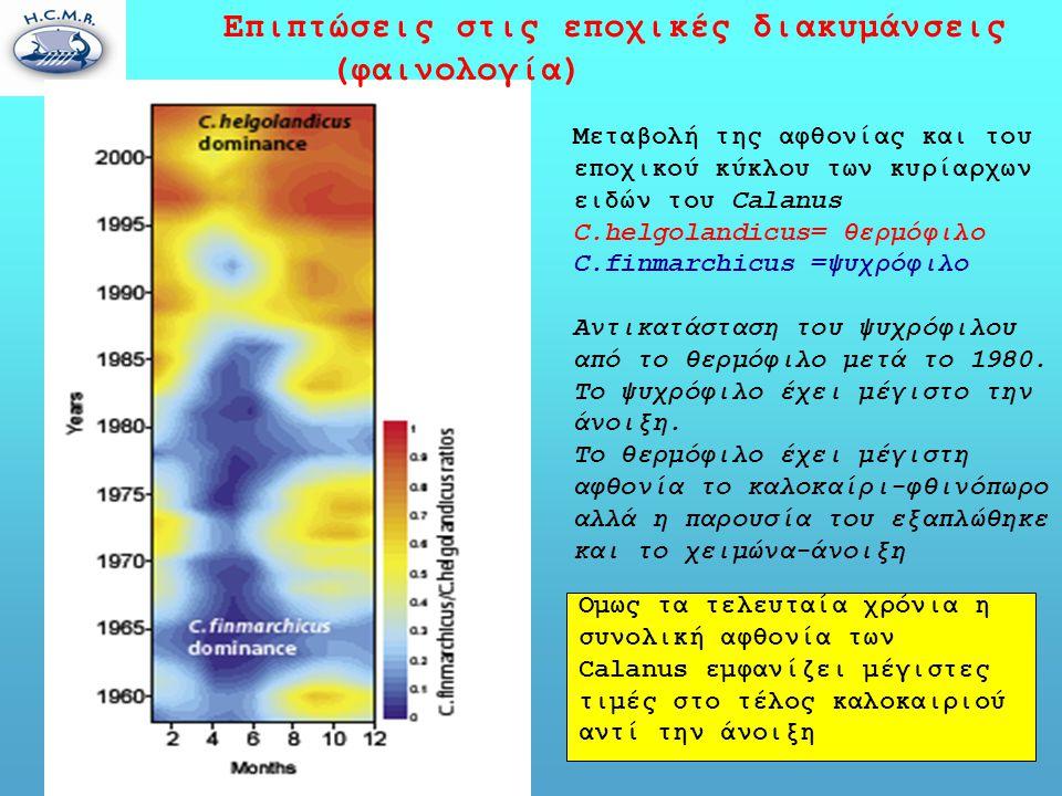 Επιπτώσεις στις εποχικές διακυμάνσεις (φαινολογία) Μεταβολή της αφθονίας και του εποχικού κύκλου των κυρίαρχων ειδών του Calanus C.helgolandicus= θερμόφιλο C.finmarchicus =ψυχρόφιλο Αντικατάσταση του ψυχρόφιλου από το θερμόφιλο μετά το 1980.