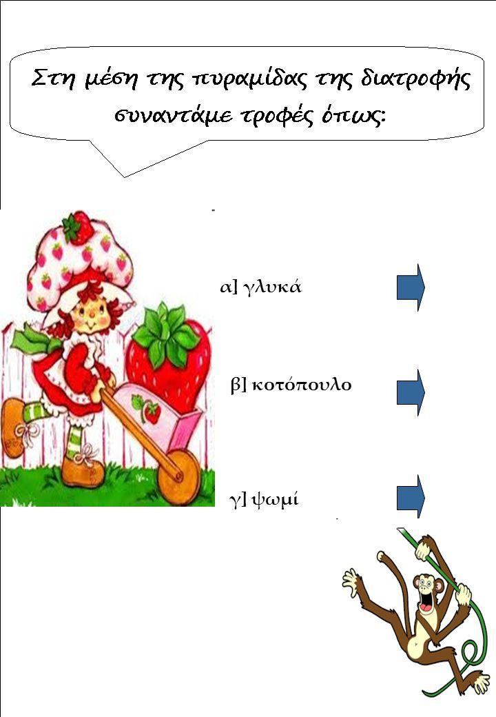 α] γλυκά β] κοτόπουλο γ] ψωμί
