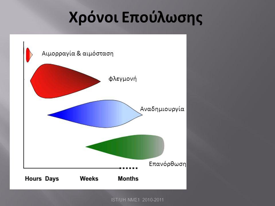 Χρόνοι Επούλωσης Αιμορραγία & αιμόσταση φλεγμονή Αναδημιουργία Επανόρθωση IST/UH ΝΜΣ 1 2010-2011
