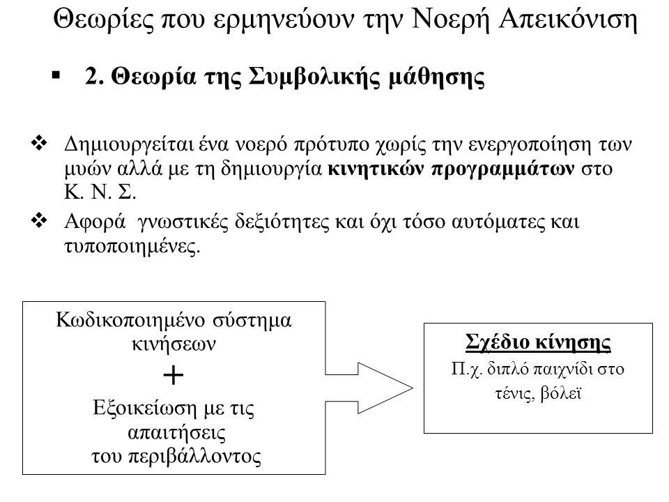  2. Θεωρία της Συμβολικής μάθησης  Δημιουργείται ένα νοερό πρότυπο χωρίς την ενεργοποίηση των μυών αλλά με τη δημιουργία κινητικών προγραμμάτων στο