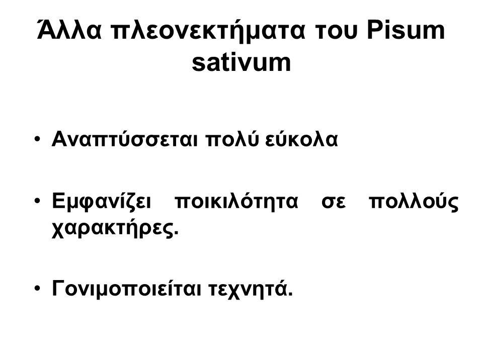 Άλλα πλεονεκτήματα του Pisum sativum •Αναπτύσσεται πολύ εύκολα •Εμφανίζει ποικιλότητα σε πολλούς χαρακτήρες. •Γονιμοποιείται τεχνητά.