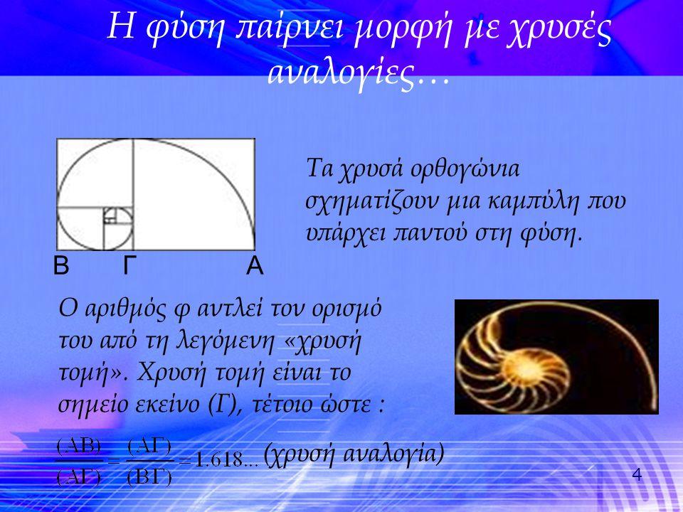 5 Με τον ίδιο τρόπο, το ορθογώνιο του σχήματος καλείται «χρυσό» και έχει μια υπέροχη ιδιότητα: Αν αφαιρέσουμε από τη μια πλευρά το μεγαλύτερο δυνατό τετράγωνο απομένει ένα καινούριο ορθογώνιο που είναι επίσης χρυσό, κοκ… Ενώνοντας με μια καμπύλη τις κορυφές των ορθογωνίων σχηματίζεται έλικα.