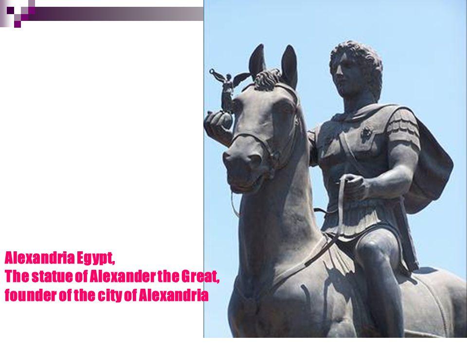 ΑΛΕΞΑΝΔΡΕΙΑ ΑΙΓΥΠΤΟΥ, Άγαλμα του Μ. Αλεξάνδρου, ιδρυτή της πόλης.