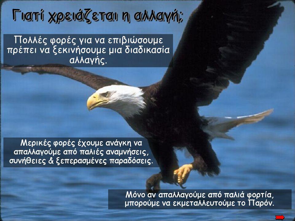 Ακόμη 30 χρόνια! Μετά από πέντε μήνες, ο Αετός πραγματοποιεί τη διάσημη πτήση της Αναγέννησής του και ζει…