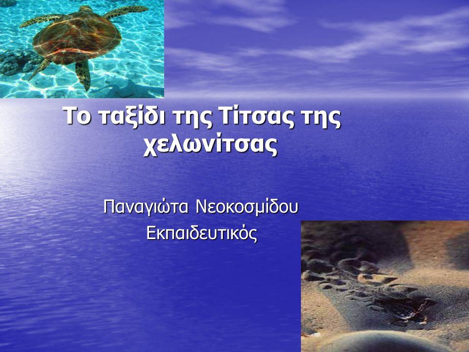 Το ταξίδι της Τίτσας της χελωνίτσας Παναγιώτα Νεοκοσμίδου Εκπαιδευτικός