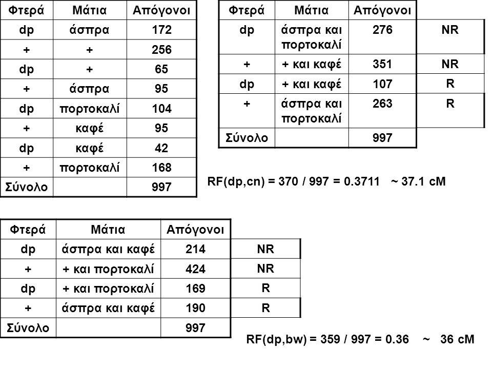 ΦτεράΜάτιαΑπόγονοι dpάσπρα172 ++256 dp+65 +άσπρα95 dpπορτοκαλί104 +καφέ95 dpκαφέ42 +πορτοκαλί168 Σύνολο997 ΦτεράΜάτιαΑπόγονοι dpάσπρα και πορτοκαλί 27