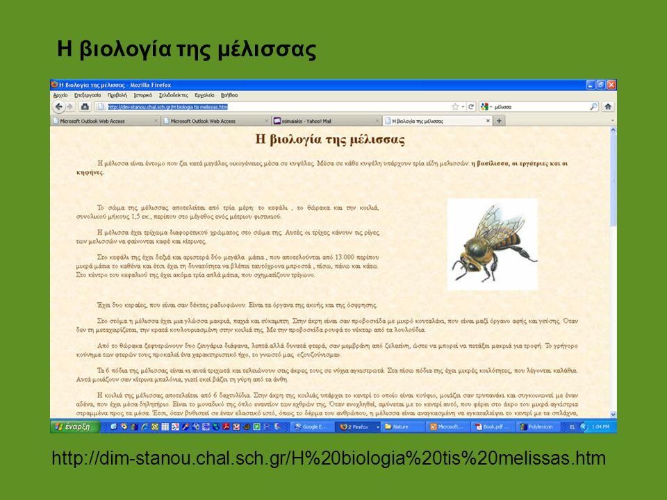 Η βιολογία της μέλισσας http://dim-stanou.chal.sch.gr/H%20biologia%20tis%20melissas.htm