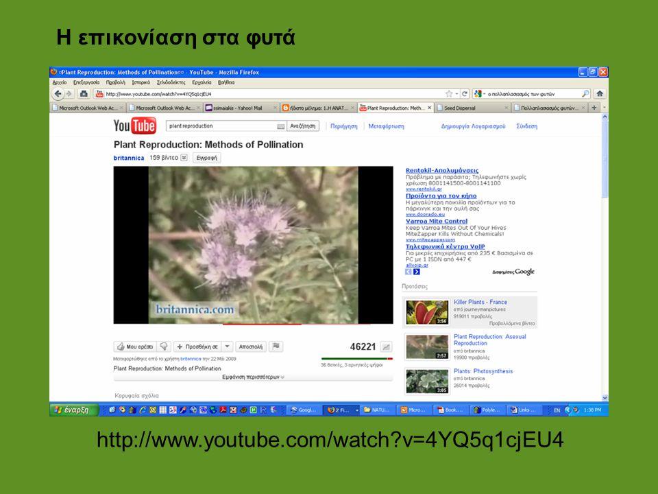 http://www.youtube.com/watch?v=4YQ5q1cjEU4 Η επικονίαση στα φυτά