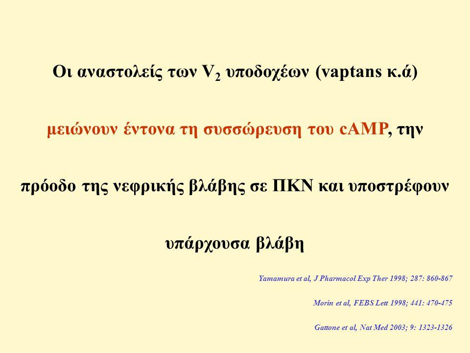 Οι αναστολείς των V 2 υποδοχέων (vaptans κ.ά) μειώνουν έντονα τη συσσώρευση του cAMP, την πρόοδο της νεφρικής βλάβης σε ΠΚΝ και υποστρέφουν υπάρχουσα βλάβη Yamamura et al, J Pharmacol Exp Ther 1998; 287: 860-867 Morin et al, FEBS Lett 1998; 441: 470-475 Gattone et al, Nat Med 2003; 9: 1323-1326