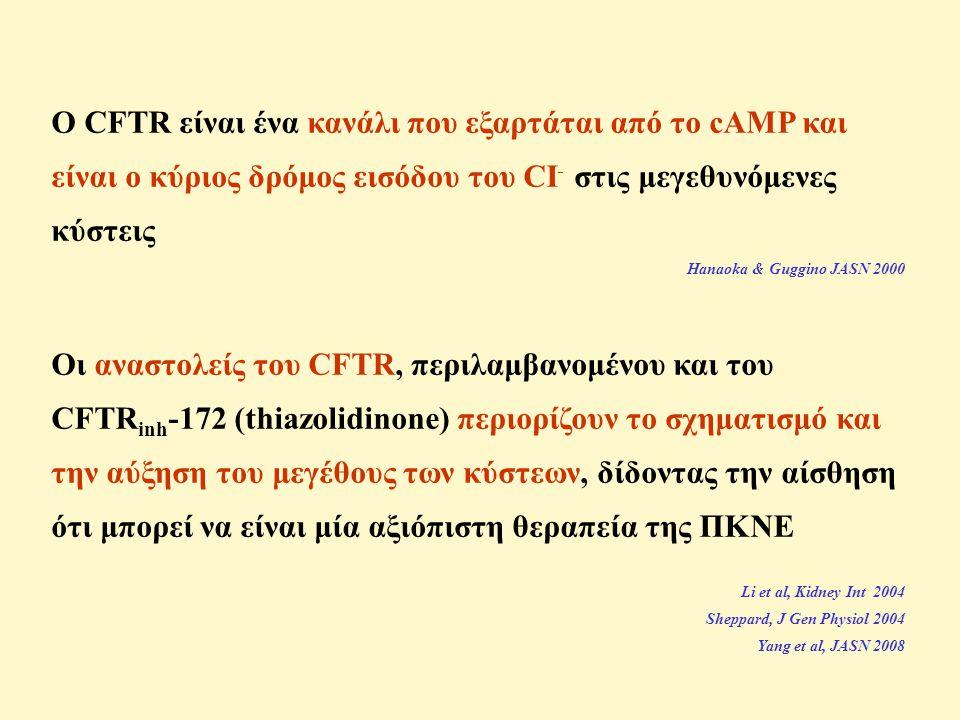 Ο CFTR είναι ένα κανάλι που εξαρτάται από το cAMP και είναι ο κύριος δρόμος εισόδου του CI - στις μεγεθυνόμενες κύστεις Hanaoka & Guggino JASN 2000 Οι αναστολείς του CFTR, περιλαμβανομένου και του CFTR inh -172 (thiazolidinone) περιορίζουν το σχηματισμό και την αύξηση του μεγέθους των κύστεων, δίδοντας την αίσθηση ότι μπορεί να είναι μία αξιόπιστη θεραπεία της ΠΚΝΕ Li et al, Kidney Int 2004 Sheppard, J Gen Physiol 2004 Yang et al, JASN 2008