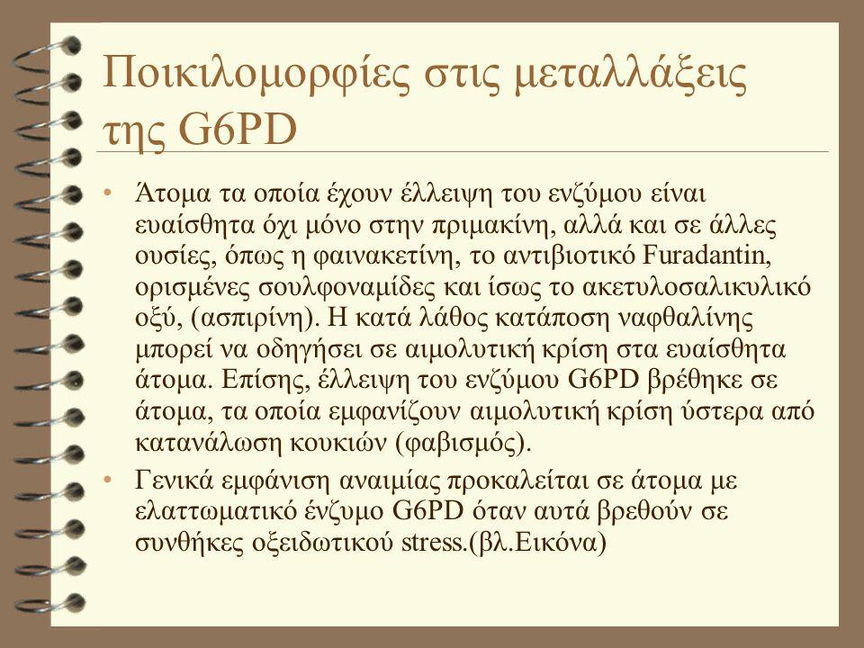Ποικιλομορφίες στις μεταλλάξεις της G6PD •Άτομα τα οποία έχουν έλλειψη του ενζύμου είναι ευαίσθητα όχι μόνο στην πριμακίνη, αλλά και σε άλλες ουσίες,