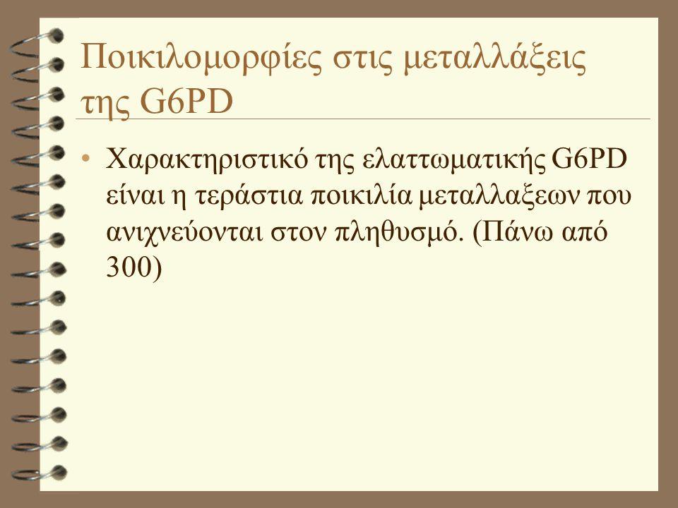 Ποικιλομορφίες στις μεταλλάξεις της G6PD •Χαρακτηριστικό της ελαττωματικής G6PD είναι η τεράστια ποικιλία μεταλλαξεων που ανιχνεύονται στον πληθυσμό.
