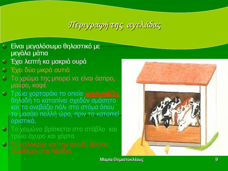 Μαρία Θεμιστοκλέους8 Ωφελιμότητα Το αγελαδινό γάλα έχει βιταμίνη Α και ασβέστιο. Το ασβέστιο μας βοηθά να έχουμε Γερά κοκάλα Γερά δόντια Το κρέας της