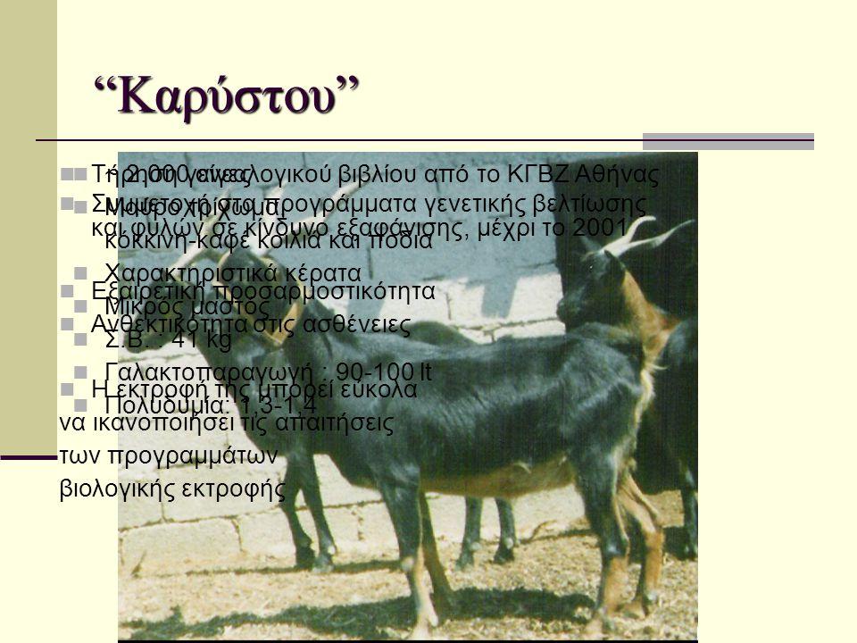 """""""Καρύστου""""  Τήρηση γενεαλογικού βιβλίου από το ΚΓΒΖ Αθήνας  Συμμετοχή στα προγράμματα γενετικής βελτίωσης και φυλών σε κίνδυνο εξαφάνισης, μέχρι το"""