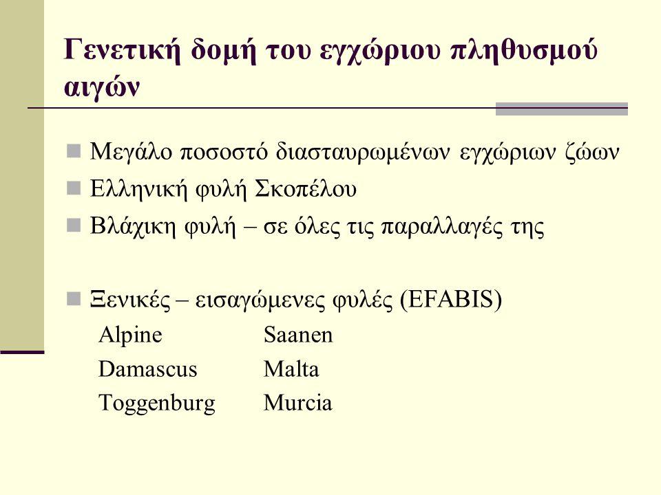 Γενετική δομή του εγχώριου πληθυσμού αιγών  Μεγάλο ποσοστό διασταυρωμένων εγχώριων ζώων  Ελληνική φυλή Σκοπέλου  Βλάχικη φυλή – σε όλες τις παραλλα