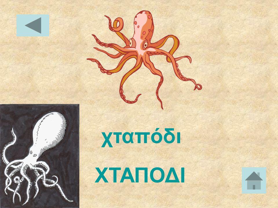 χελιδόνι ΧΕΛΙΔΟΝΙ