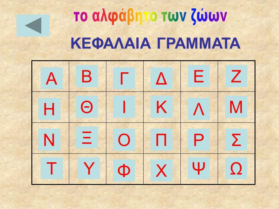 Μικρά γράμματα ΚΕΦΑΛΑΙΑ ΓΡΑΜΜΑΤΑ