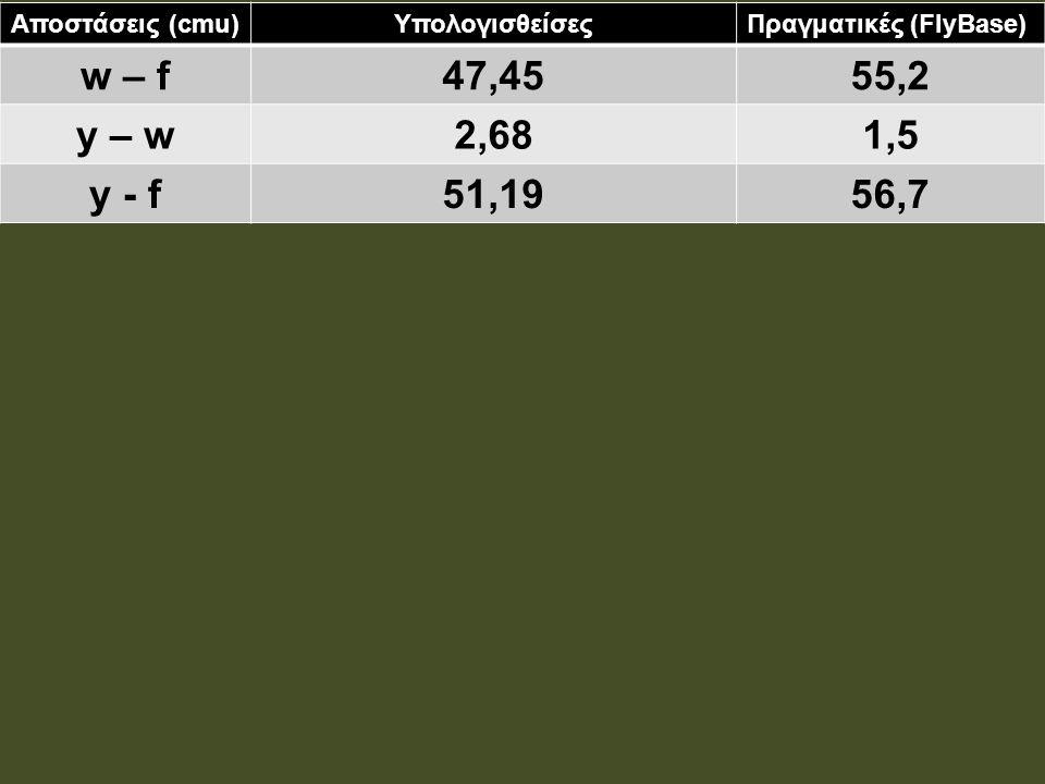Αποστάσεις (cmu)ΥπολογισθείσεςΠραγματικές (FlyBase) w – f47,4555,2 y – w2,681,5 y - f51,1956,7