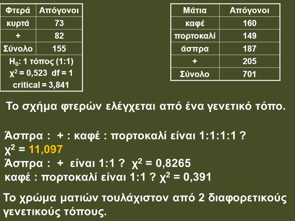 ΦτεράΑπόγονοι κυρτά73 +82 Σύνολο155 Η 0 : 1 τόπος (1:1) χ 2 = 0,523 df = 1 critical = 3,841 ΜάτιαΑπόγονοι καφέ160 πορτοκαλί149 άσπρα187 +205 Σύνολο701