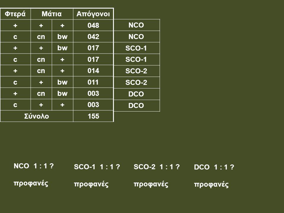 ΦτεράΜάτιαΑπόγονοι +++048 ccnbw042 ++bw017 ccn+017 +cn+014 c+bw011 +cnbw003 c++ Σύνολο155 NCO SCO-1 SCΟ-1 SCO-2 DCO NCO 1 : 1 ? προφανές SCO-1 1 : 1 ?