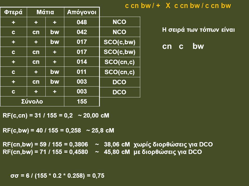 ΦτεράΜάτιαΑπόγονοι +++048 ccnbw042 ++bw017 ccn+017 +cn+014 c+bw011 +cnbw003 c++ Σύνολο155 RF(c,cn) = 31 / 155 = 0,2 ~ 20,00 cM RF(c,bw) = 40 / 155 = 0