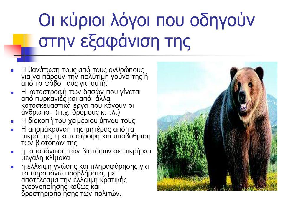 Οι κύριοι λόγοι που οδηγούν στην εξαφάνιση της  Η θανάτωση τους από τους ανθρώπους για να πάρουν την πολύτιμη γούνα της ή από το φόβο τους για αυτή.
