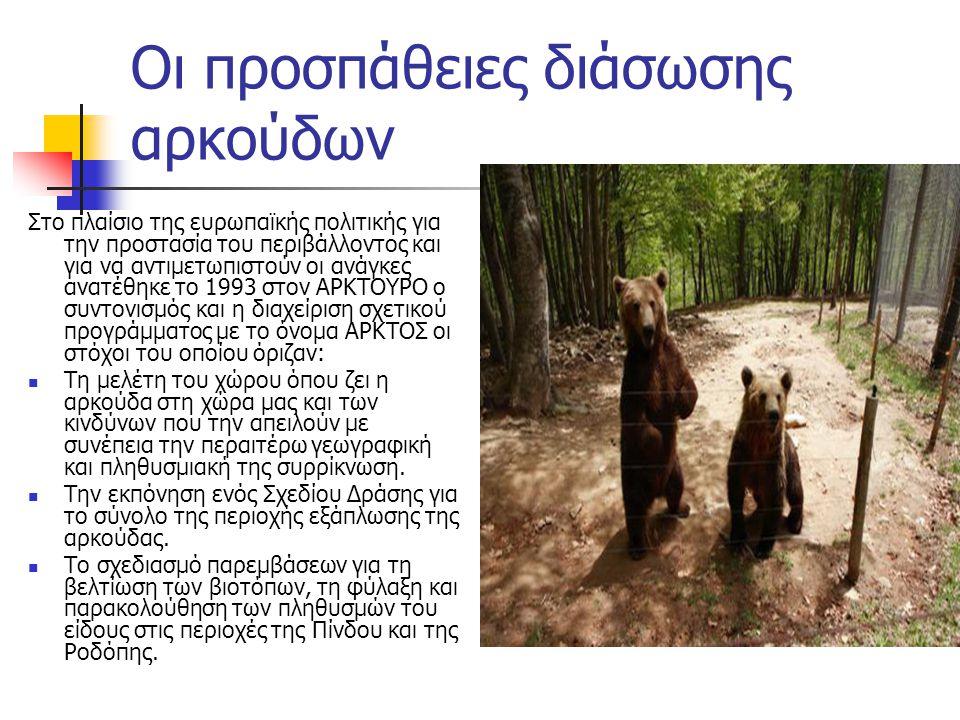 Οι προσπάθειες διάσωσης αρκούδων Στο πλαίσιο της ευρωπαϊκής πολιτικής για την προστασία του περιβάλλοντος και για να αντιμετωπιστούν οι ανάγκες ανατέθηκε το 1993 στον ΑΡΚΤΟΥΡΟ ο συντονισμός και η διαχείριση σχετικού προγράμματος με το όνομα APKTOΣ οι στόχοι του οποίου όριζαν:  Tη μελέτη του χώρου όπου ζει η αρκούδα στη χώρα μας και των κινδύνων που την απειλούν με συνέπεια την περαιτέρω γεωγραφική και πληθυσμιακή της συρρίκνωση.