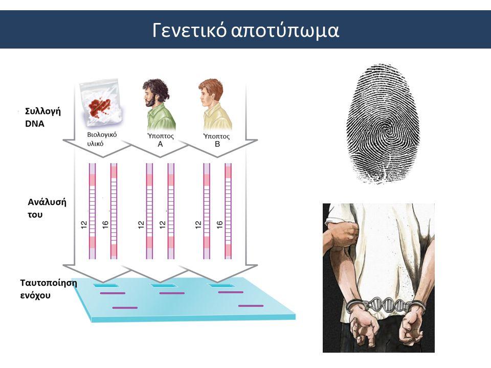 Γενετικό αποτύπωμα