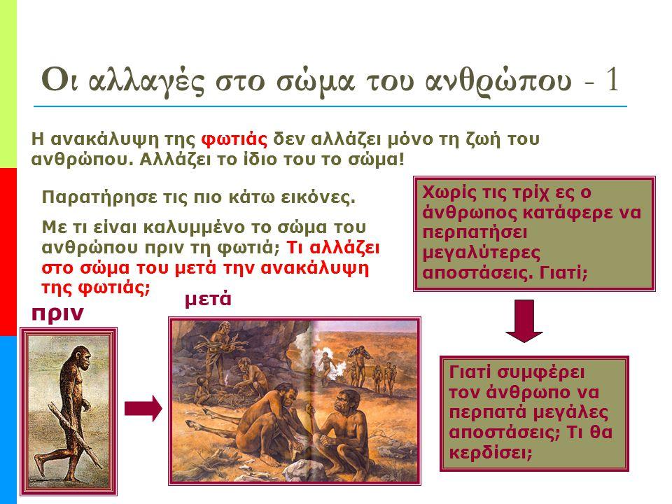 Οι αλλαγές στο σώμα του ανθρώπου - 1 Η ανακάλυψη της φωτιάς δεν αλλάζει μόνο τη ζωή του ανθρώπου.